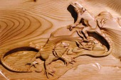 Lizard Carving